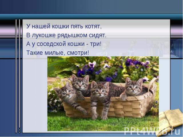 У нашей кошки пять котят, У нашей кошки пять котят, В лукошке рядышком сидят. А у соседской кошки - три! Такие милые, смотри!
