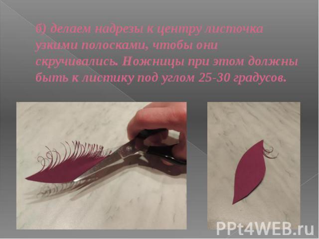 б) делаем надрезы к центру листочка узкими полосками, чтобы они скручивались. Ножницы при этом должны быть к листику под углом 25-30 градусов.