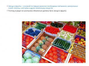 Овощи и фрукты – основной поставщик жизненно необходимых витаминов, минеральных