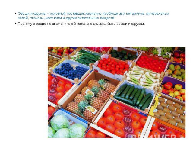 Овощи и фрукты – основной поставщик жизненно необходимых витаминов, минеральных солей, глюкозы, клетчатки и других питательных веществ. Овощи и фрукты – основной поставщик жизненно необходимых витаминов, минеральных солей, глюкозы, клетчатки и други…