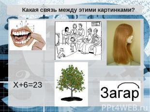 Какая связь между этими картинками?