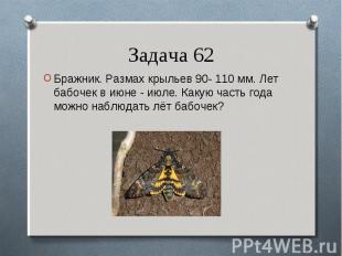 Бражник. Размах крыльев 90- 110 мм. Лет бабочек в июне - июле. Какую часть года