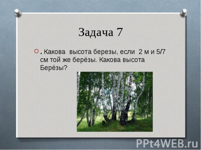 . Какова высота березы, если 2 м и 5/7 см той же берёзы. Какова высота Берёзы? . Какова высота березы, если 2 м и 5/7 см той же берёзы. Какова высота Берёзы?