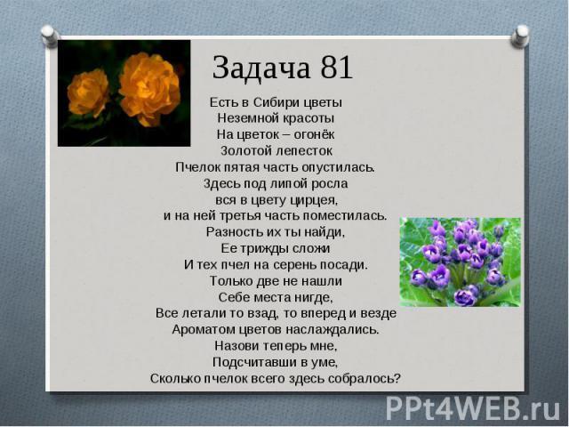 Есть в Сибири цветы Есть в Сибири цветы Неземной красоты На цветок – огонёк Золотой лепесток Пчелок пятая часть опустилась. Здесь под липой росла вся в цвету цирцея, и на ней третья часть поместилась. Разность их ты найди, Ее трижды сложи И тех пчел…