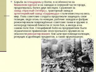Борьба заплацдармыу Волги, в особенности наМамаевом кургане&nb