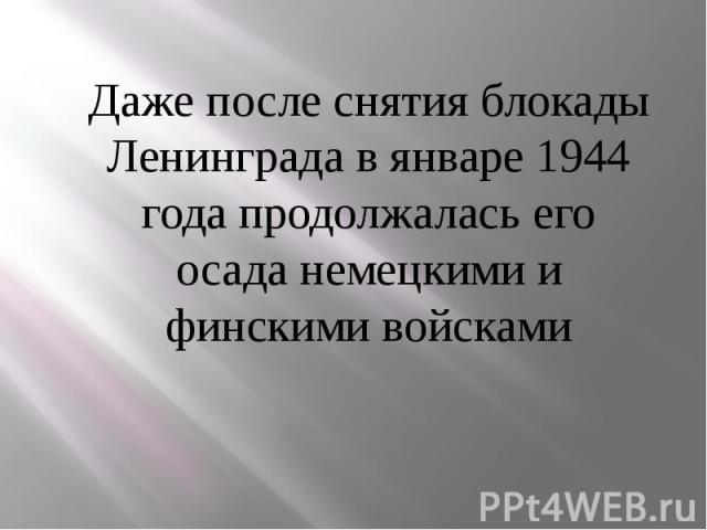 Даже после снятия блокады Ленинграда в январе 1944 года продолжалась его осада немецкими и финскими войсками Даже после снятия блокады Ленинграда в январе 1944 года продолжалась его осада немецкими и финскими войсками