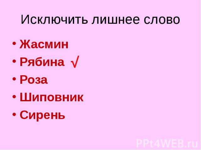 Жасмин Жасмин Рябина Роза Шиповник Сирень