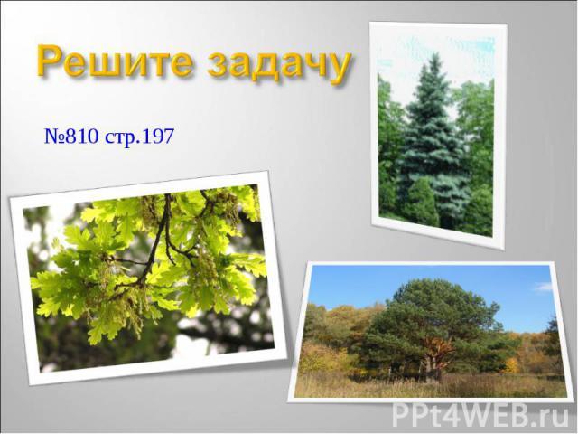 №810 стр.197 №810 стр.197