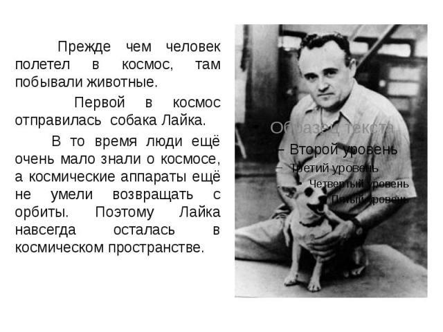 Прежде чем человек полетел в космос, там побывали животные. Прежде чем человек полетел в космос, там побывали животные. Первой в космос отправилась собака Лайка. В то время люди ещё очень мало знали о космосе, а космические аппараты ещё не умели воз…