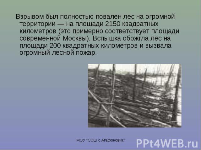 Взрывом был полностью повален лес на огромной территории — на площади 2150 квадратных километров (это примерно соответствует площади современной Москвы). Вспышка обожгла лес на площади 200 квадратных километров и вызвала огромный лесной пожар. Взрыв…