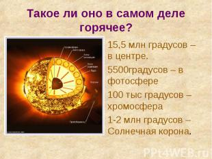 15,5 млн градусов – в центре. 15,5 млн градусов – в центре. 5500градусов – в фот