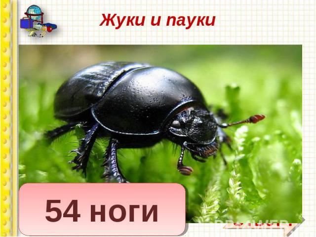 Вопрос: сколько ног у жука? Вопрос: сколько ног у жука? Сколько ног у паука? У меня в одной коробке три жука, А в другой имею я три паука. В уголке шуршат бумагой два ежа, А в двух клетках распевают два чижа. Кто, ребята, сосчитать бы мне помог, Ско…