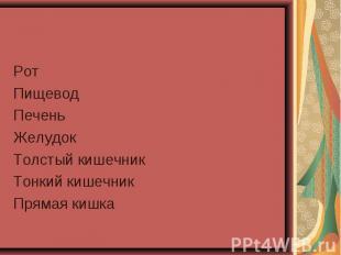 Рот Рот Пищевод Печень Желудок Толстый кишечник Тонкий кишечник Прямая кишка