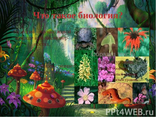 Что такое биология? Биология – наука о живой природе и ее закономер-ностях. По-гречески «биос» означает жизнь, а «логос» – учение, знание.
