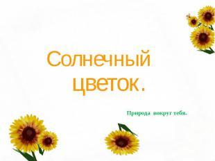Солнечный цветок.