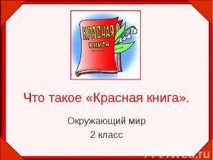 Что такое «Красная книга». Окружающий мир 2 класс