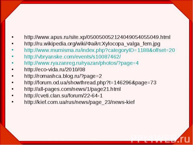 http://www.apus.ru/site.xp/050050052124049054055049.html http://ru.wikipedia.org/wiki/Файл:Xylocopa_valga_fem.jpg http://www.mumisma.ru/index.php?categoryID=1188&offset=20 http://vbryanske.com/events/s10087462/ http://www.ryazanreg.ru/ryazan/pho…