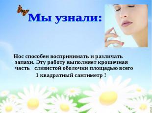 Нос способен воспринимать и различать запахи. Эту работу выполняет крошечная час
