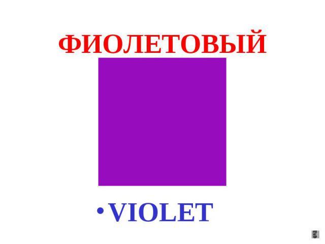 ФИОЛЕТОВЫЙ VIOLET