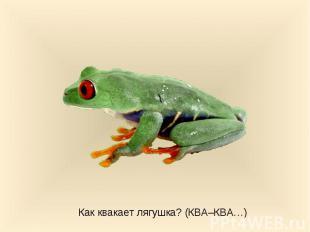 Как квакает лягушка? (КВА–КВА…)