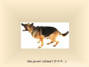 Как рычит собака? (Р-Р-Р...)