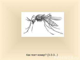 Как поет комар? (З-З-З...)