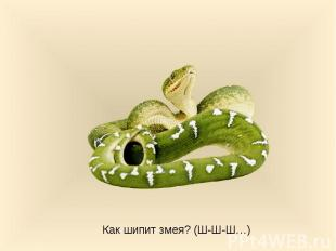 Как шипит змея? (Ш-Ш-Ш…)
