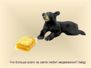 Что больше всего на свете любит медвежонок? (мёд)