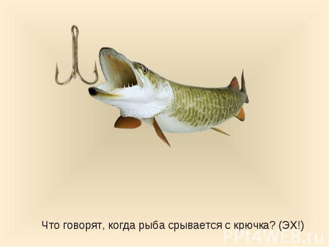 Что говорят, когда рыба срывается с крючка? (ЭХ!)
