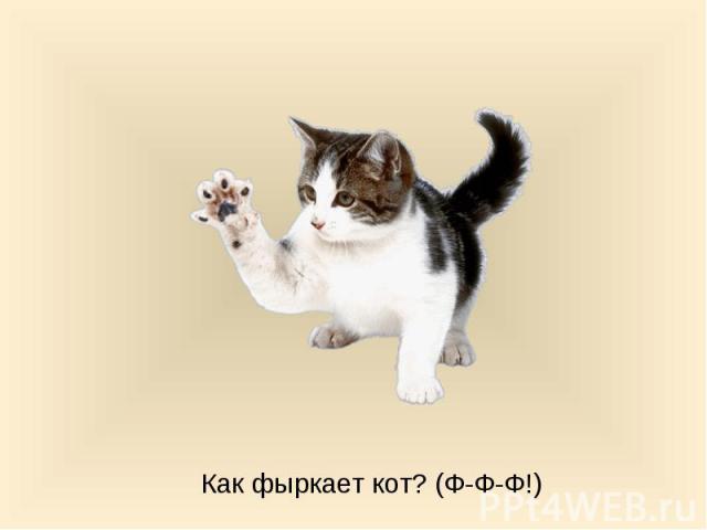 Как фыркает кот? (Ф-Ф-Ф!)