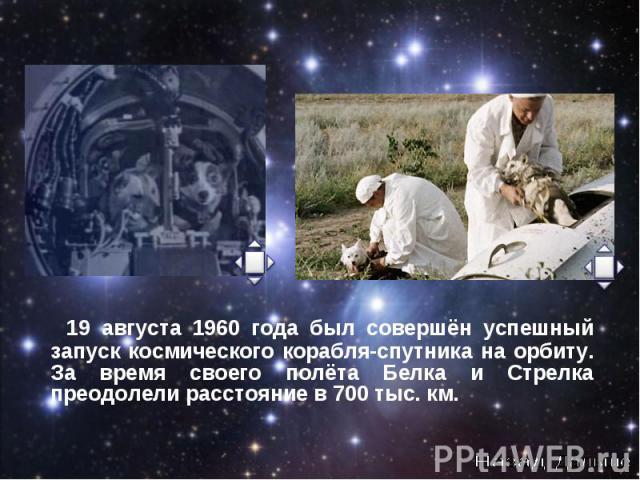 19 августа 1960 года был совершён успешный запуск космического корабля-спутника на орбиту. За время своего полёта Белка и Стрелка преодолели расстояние в 700 тыс. км. 19 августа 1960 года был совершён успешный запуск космического корабля-спутника на…