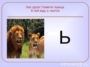Лев суров! Помягче львица. В ней ведь Ь таится!