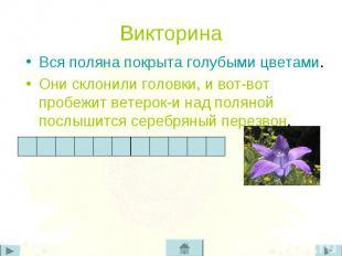 Вся поляна покрыта голубыми цветами. Вся поляна покрыта голубыми цветами. Они ск