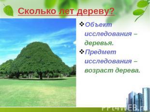 Сколько лет дереву? Объект исследования – деревья. Предмет исследования – возрас