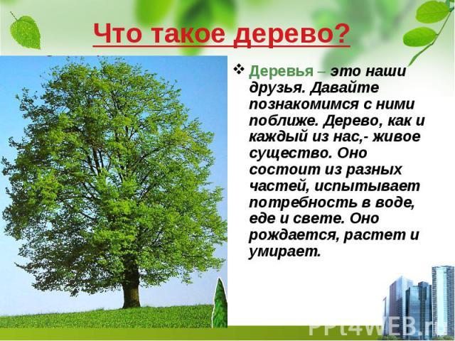 Что такое дерево? Деревья – это наши друзья. Давайте познакомимся с ними поближе. Дерево, как и каждый из нас,- живое существо. Оно состоит из разных частей, испытывает потребность в воде, еде и свете. Оно рождается, растет и умирает.