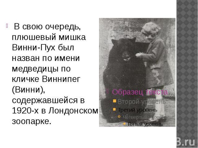 В свою очередь, плюшевый мишка Винни-Пух был назван по имени медведицы по кличке Виннипег (Винни), содержавшейся в 1920-х в Лондонском зоопарке. В свою очередь, плюшевый мишка Винни-Пух был назван по имени медведицы по кличке Виннипег (Винни), содер…