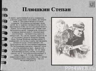 Плюшкин Степан П. имеет, единственный из всех помещиков, довольно подробну