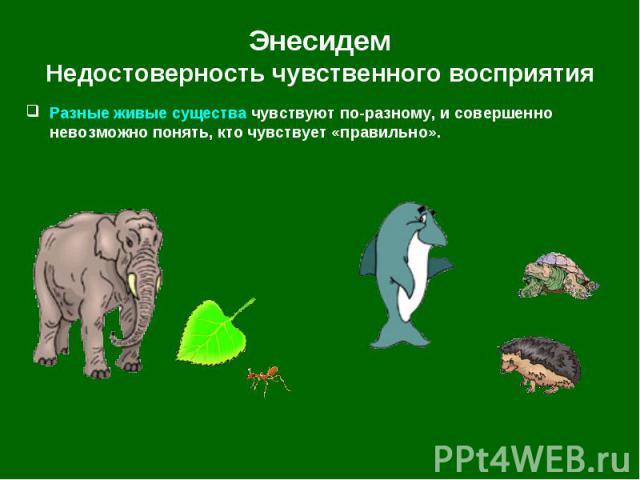 Разные живые существа чувствуют по-разному, и совершенно невозможно понять, кто чувствует «правильно». Разные живые существа чувствуют по-разному, и совершенно невозможно понять, кто чувствует «правильно».