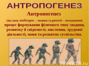 Антропогенез (від грец. аnthropos – людина та genesis – походження) процес форму