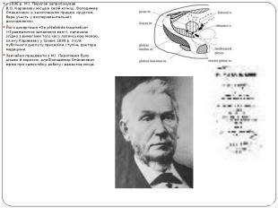 у1836р. М.І. Пирогов запропонував В.О.Караваєву місце вс