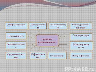 Основные принципы реформирования отечественной образовательной системы