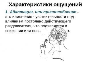 Характеристики ощущений 1. Адаптация, или приспособление - это изменение чувстви