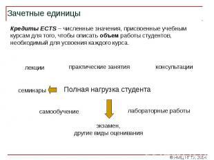 Зачетные единицы Кредиты ECTS – численные значения, присвоенные учебным курсам д