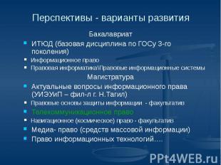 Перспективы - варианты развития Бакалавриат ИТЮД (базовая дисциплина по ГОСу 3-г