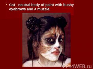 Cat - neutral body of paint with bushy eyebrows and a muzzle. Cat - neutral body