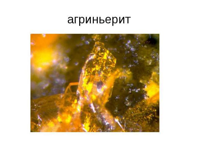 агриньерит