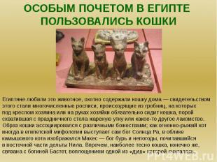 Особым почетом в египте пользовались кошки.