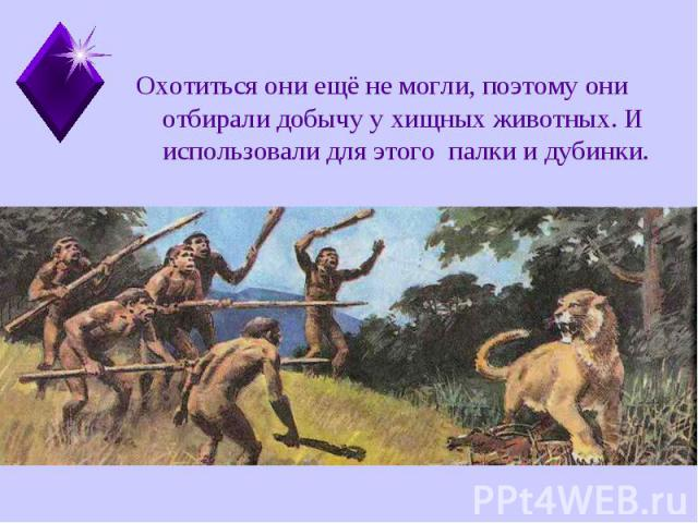 Охотиться они ещё не могли, поэтому они отбирали добычу у хищных животных. И использовали для этого палки и дубинки. Охотиться они ещё не могли, поэтому они отбирали добычу у хищных животных. И использовали для этого палки и дубинки.