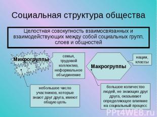Целостная совокупность взаимосвязанных и взаимодействующих между собой социальны