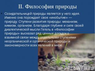 II. Философия природы Созидательницей природы является у него идея. Именно она п
